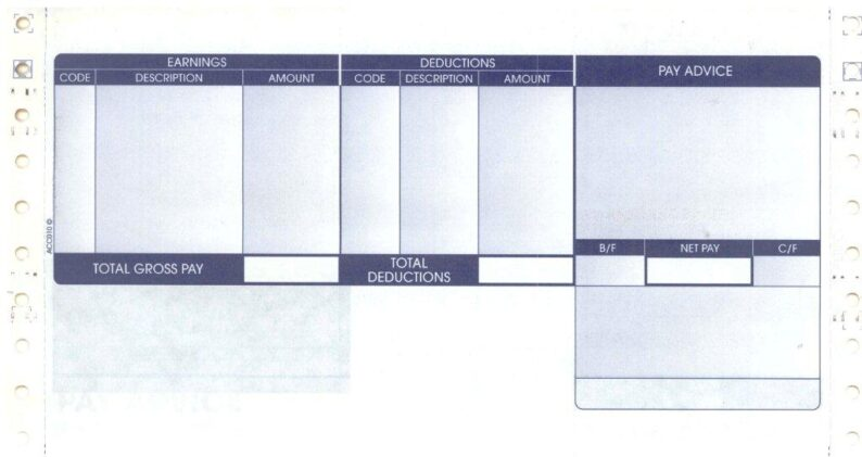 ACCESS ACC010 3 PART SECURITY PAYSLIP