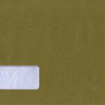 Pegasus Payslip Envelope