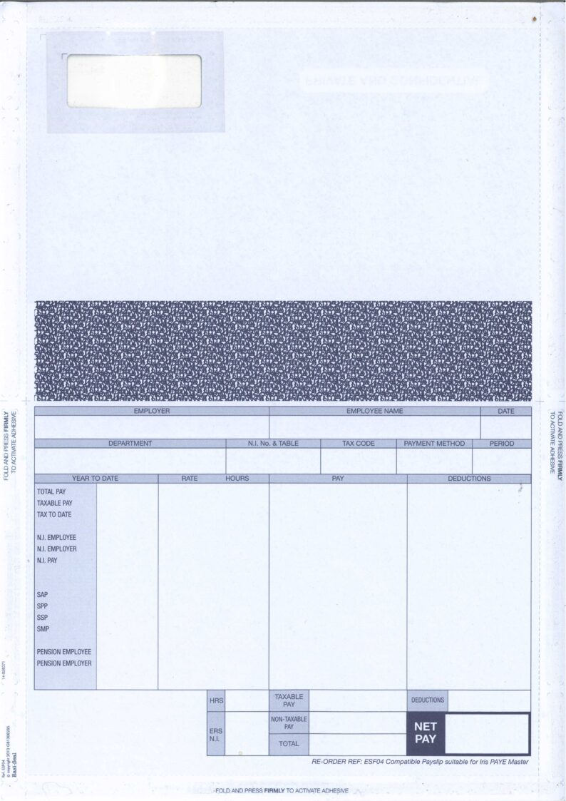 IRIS SELF SEAL PAYSLIP